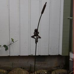 Växtstöd Groda på kaveldun